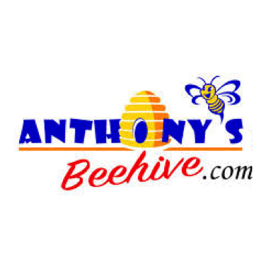 Anthony's Beehive.png