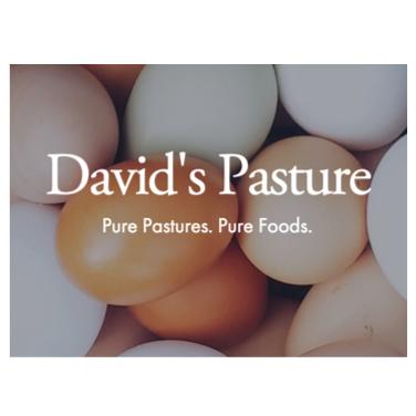 David's Pasture.png