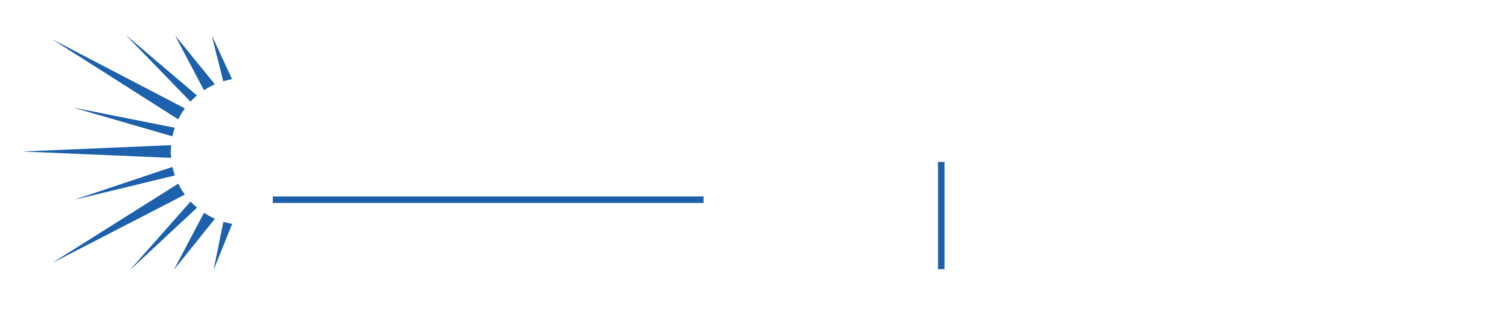 The Solar Future NL '19