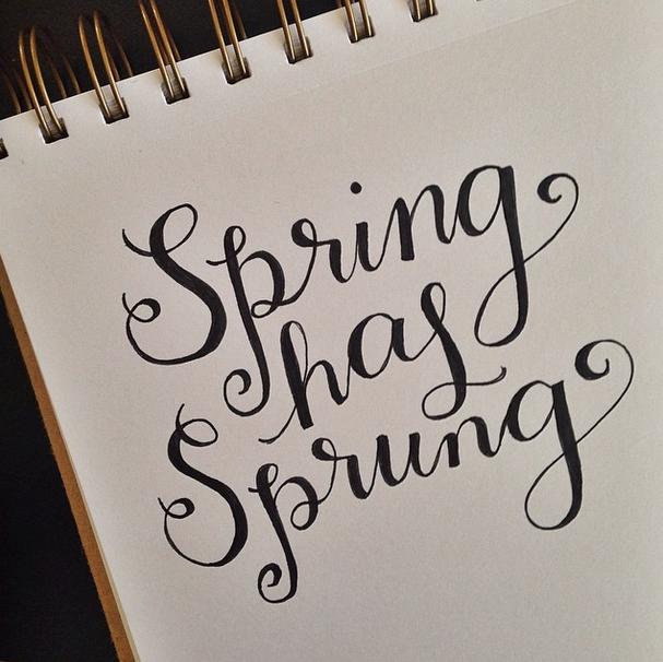Elle&Co_SpringHasSprung