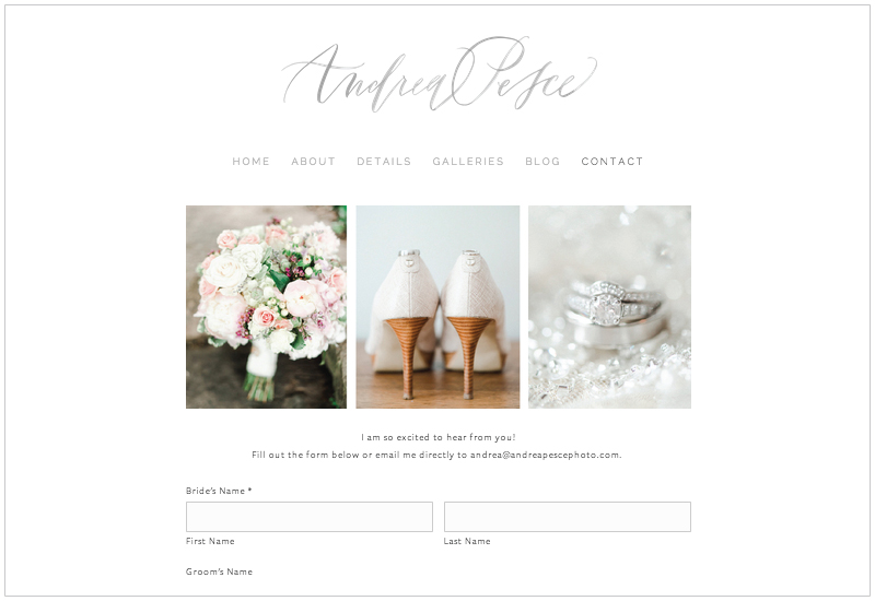 Andrea Pesce brand and website design // Elle & Company