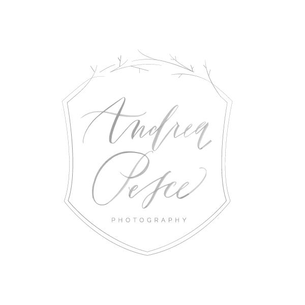 Andrea Pesce Photography branding - Elle & Company