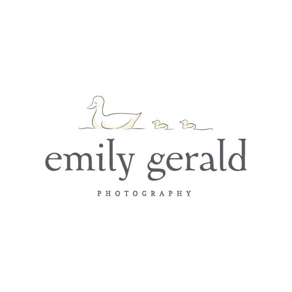 Emily Gerald Photography branding - Elle & Company