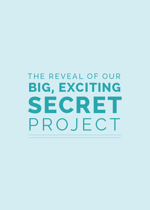 The Reveal of Our Big, Exciting, Secret Project | Elle & Company