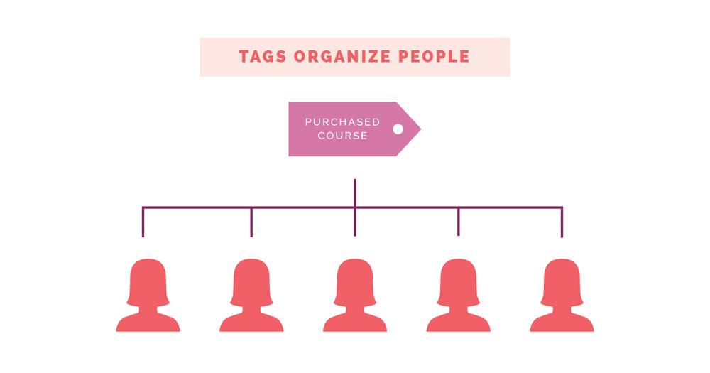 How to Make the Best Use of Segments and Tags in ConvertKit   Elle & Company