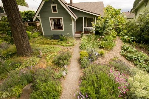 yard_garden_house_native_plants.jpg