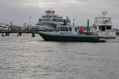 2010 Polar Plunge-2
