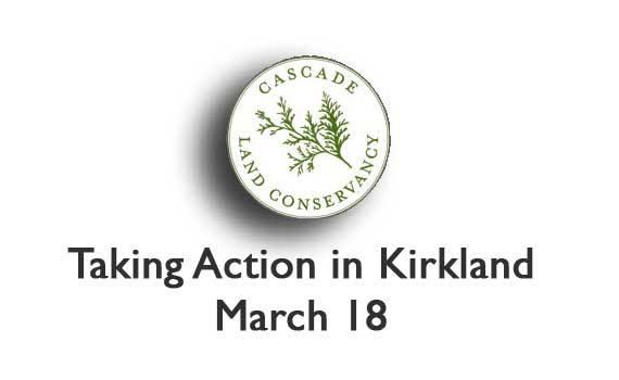 TakingActionIn-Kirkland