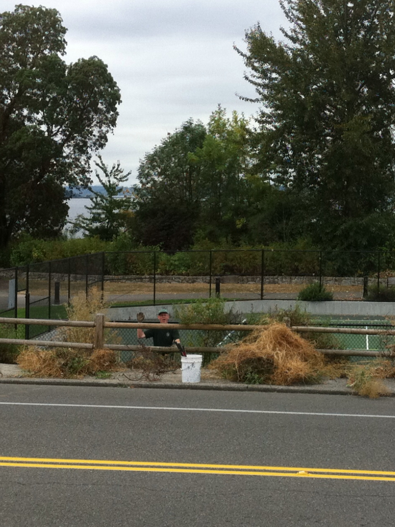 Roger Kirk works to remove weeds from neighborhood tennis courts.