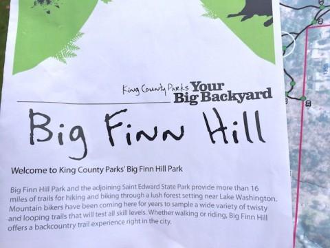 Big Finn Hill Park 13088