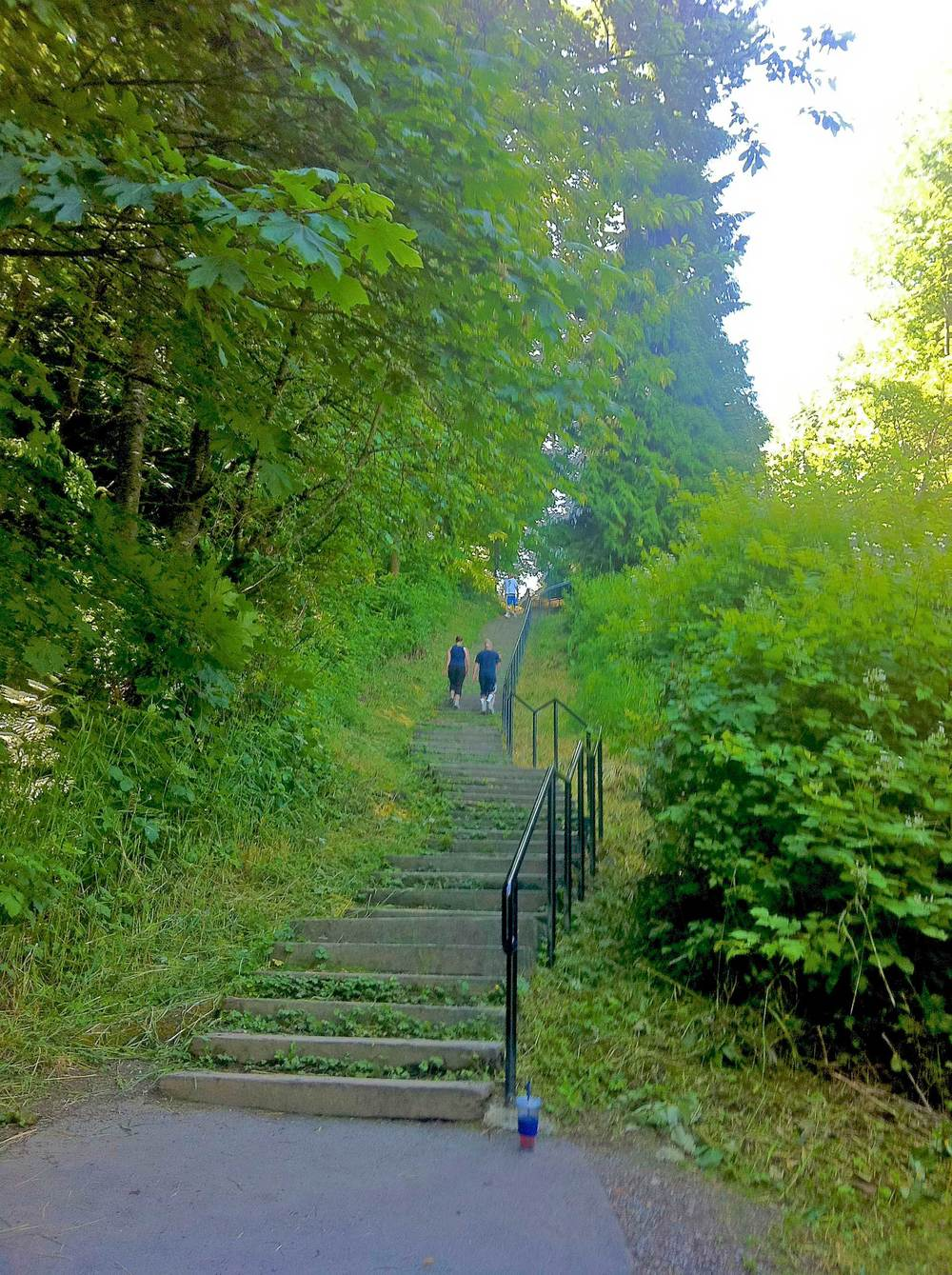 Crestwoods Park steps