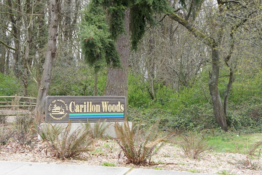 Carillon Woods Park