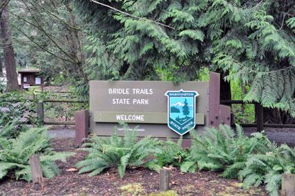 Bridle Trails State Park.http://www.bridletrails.org
