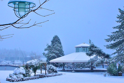 Snow day in Kirkland. 2012