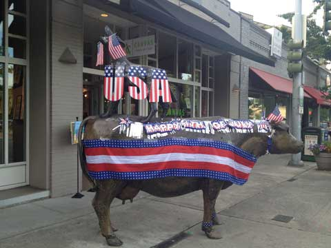 Cow-+-Coyote-July4th-2012-5.jpg