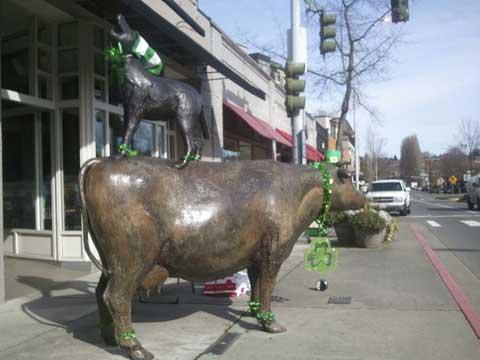 Cow-+-Coyote-St-Patricks-Day2-2012-1-(1).jpg
