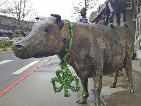Cow-+-Coyote-St-Patricks-Day-2012-1-(1).jpg