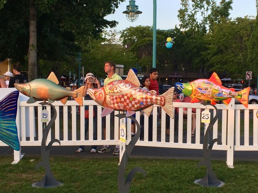 KSF Summerfest 2014 Fish Frolic 14971.jpg