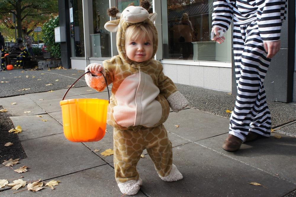 Halloween 15328.jpg