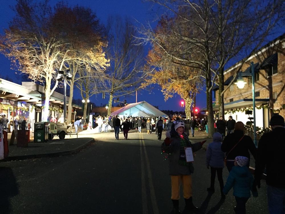 Winterfest 2014 15952.jpg