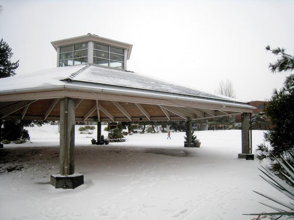 Snow in Kirkland - 82.jpg