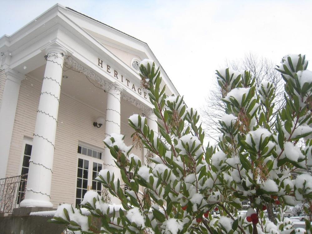 Snow in Kirkland - 13.jpg