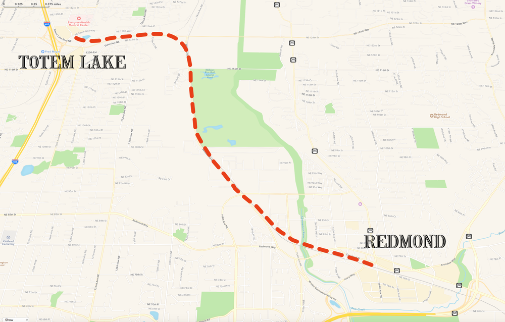 Rendering of possible route for the Willows Road Light Rail