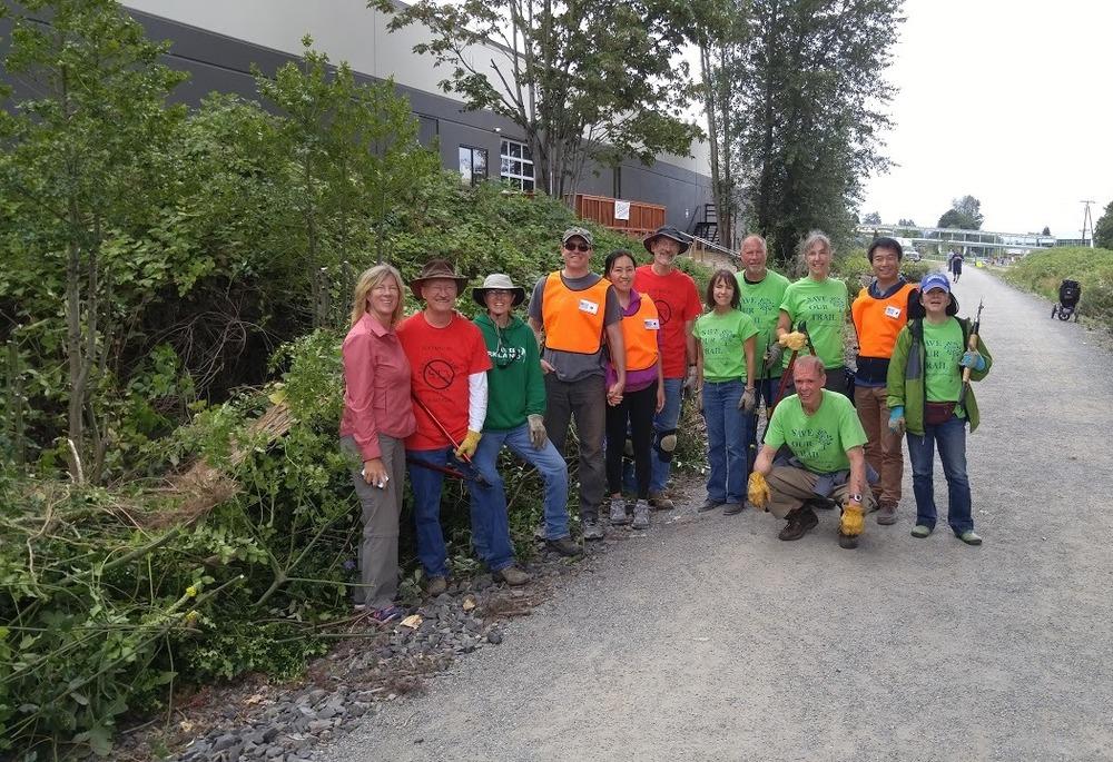 Volunteers work near Google Campus to remove invasive species.