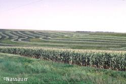 Land-image3-2.jpg