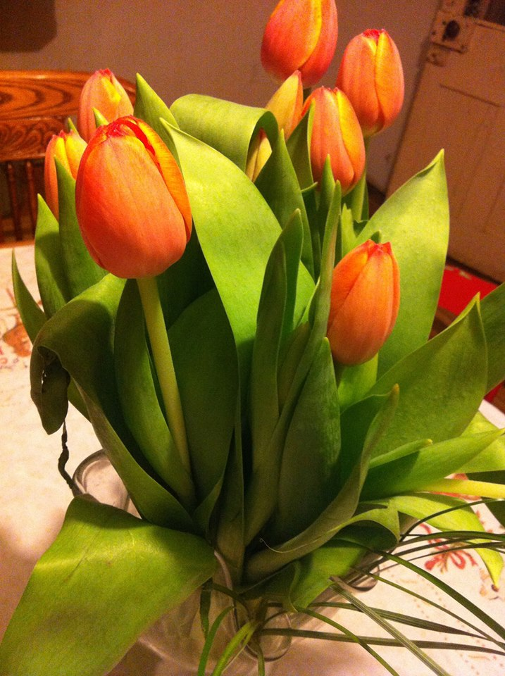 The gorgeous tulips that the gorgeous Sara brought to dinner.