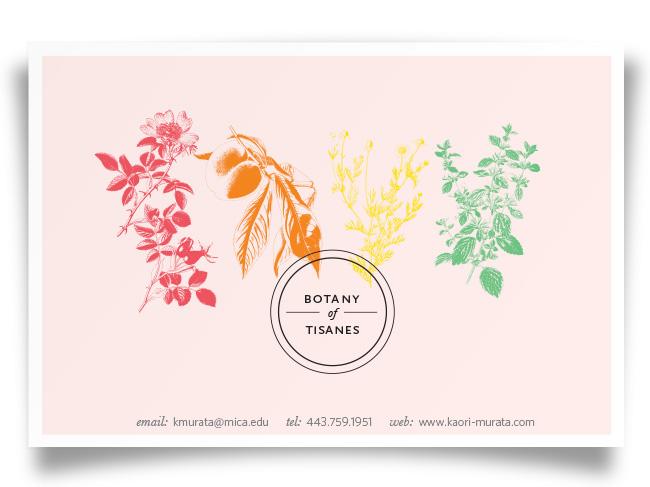 botany-of-tisanes_postcard.jpg