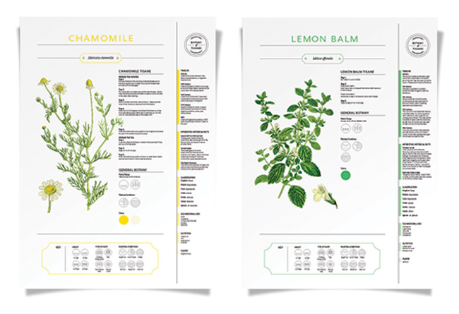botany.of.tisane_posters2.jpg