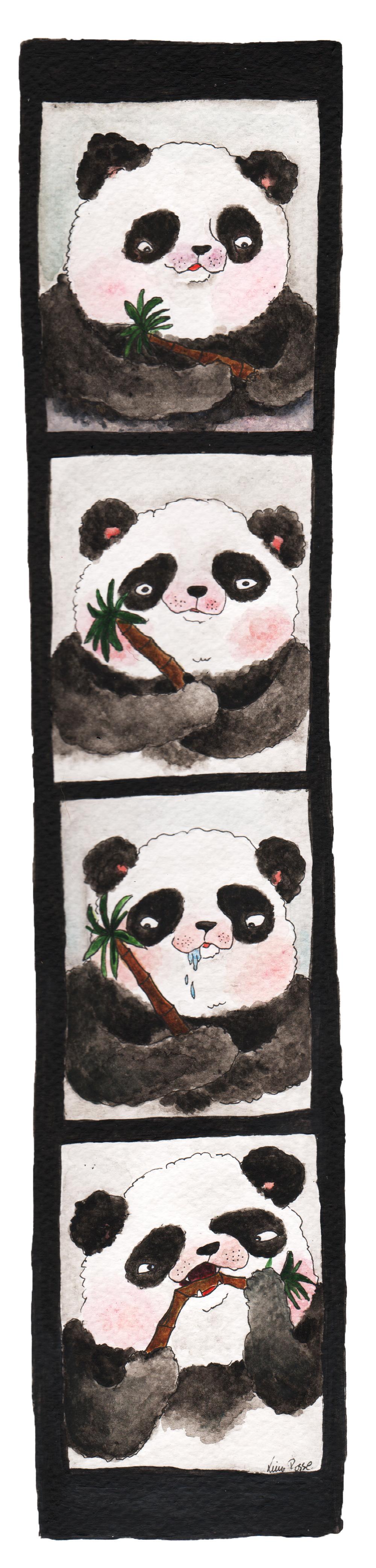 Så kan det se ut om en panda besöker en fotoautomat.