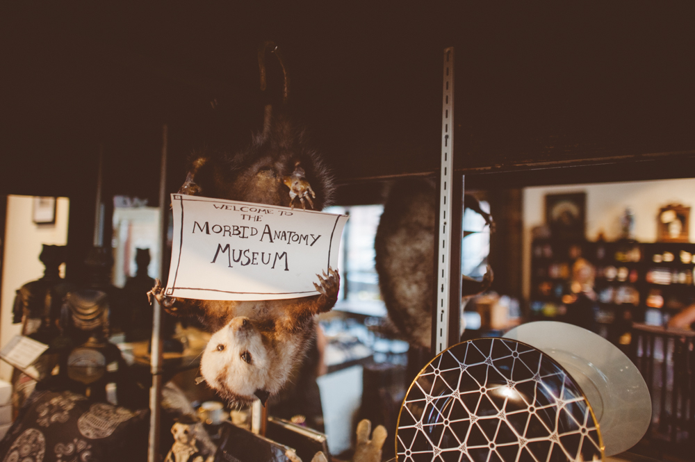 Morbid Anatomy Museum Wedding — LOVE + WOLVES CO