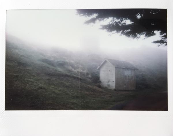 Polaroid_SSWEB_600px_22.jpg
