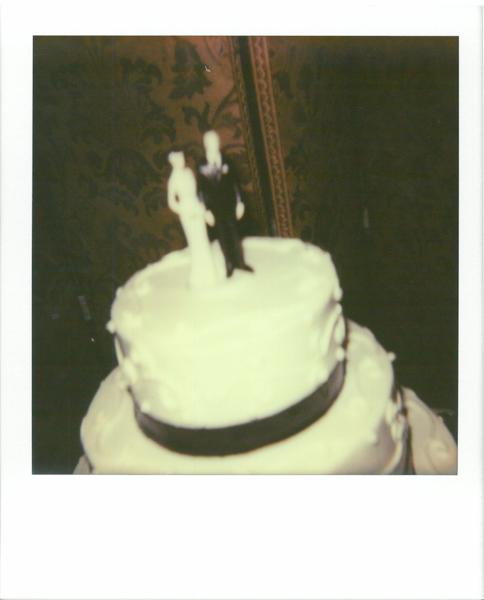 Polaroid_SSWEB_600px_45.jpg
