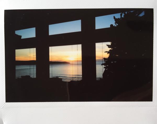 Polaroid_SSWEB_600px_50.jpg
