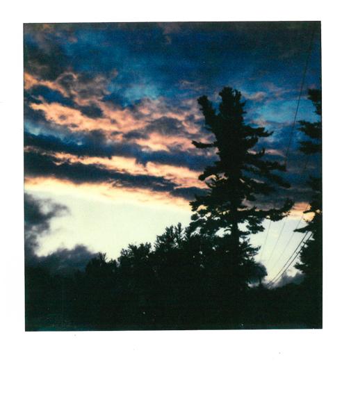 Polaroid_SSWEB_600px_69.jpg