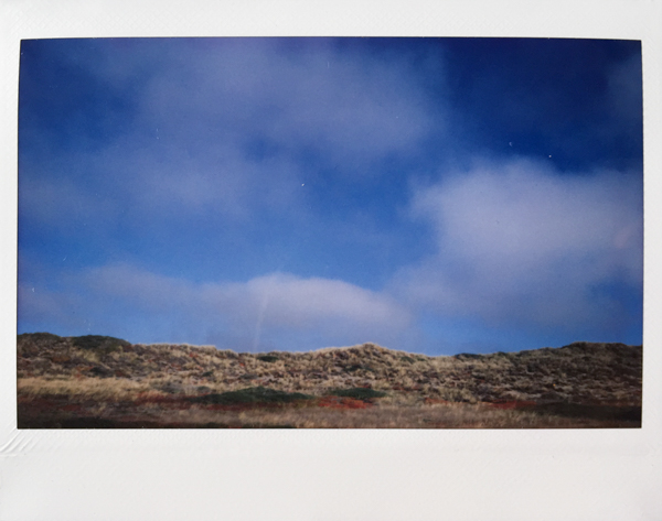 Polaroid_SSWEB_600px_92.jpg