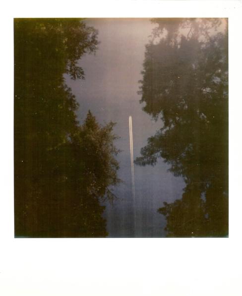 Polaroid_SSWEB_600px_61.jpg