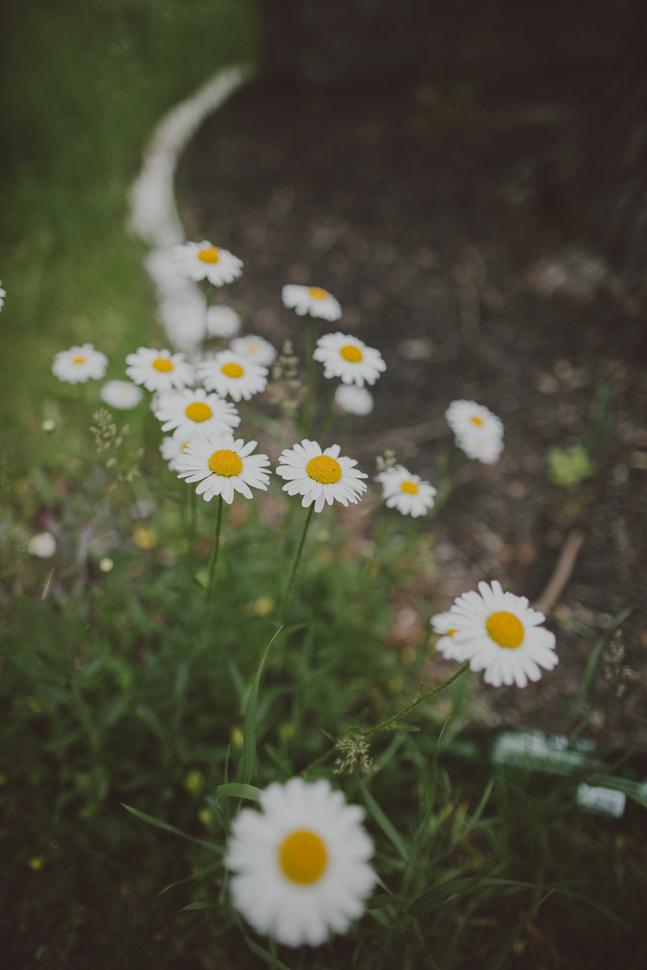 011_12_LOVE+WOLVES_Danielle+Alex_SS_NOWM.jpg