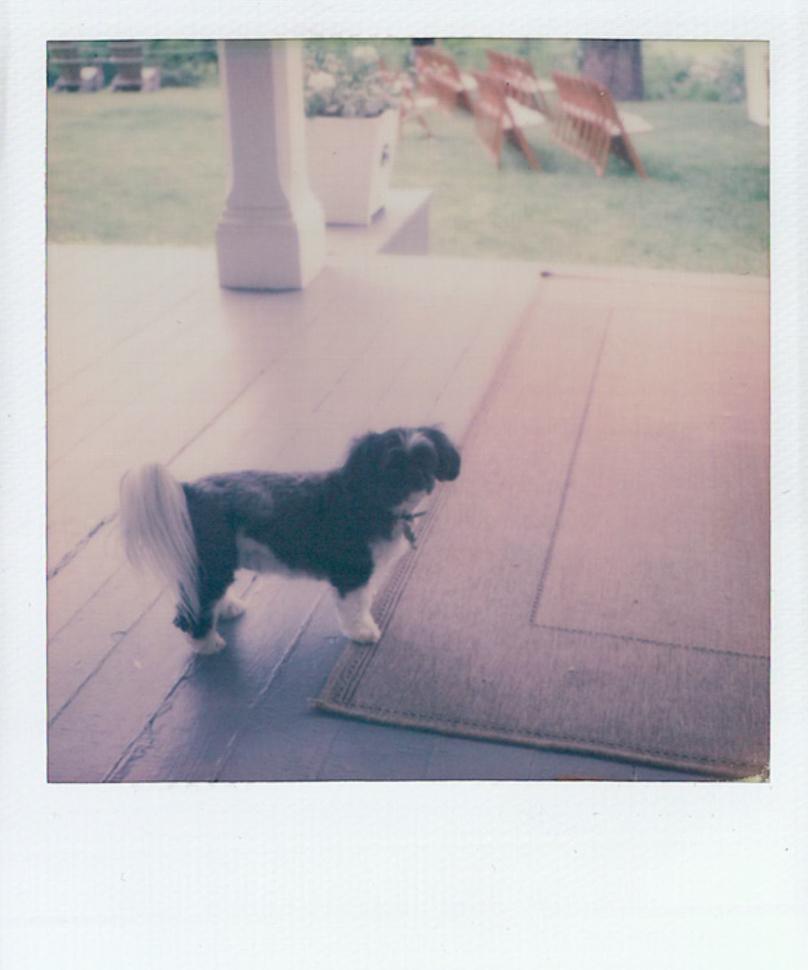 023_010_Danielle+Alex_L+W_Polaroids_SS_NOWM.jpg