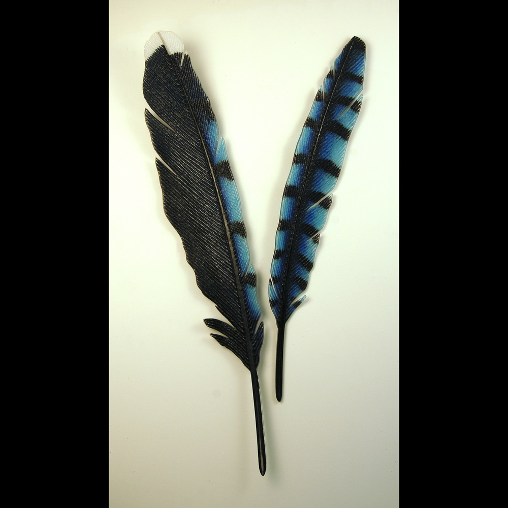 8.Dupille.BigBlue Jay feathers.jpg
