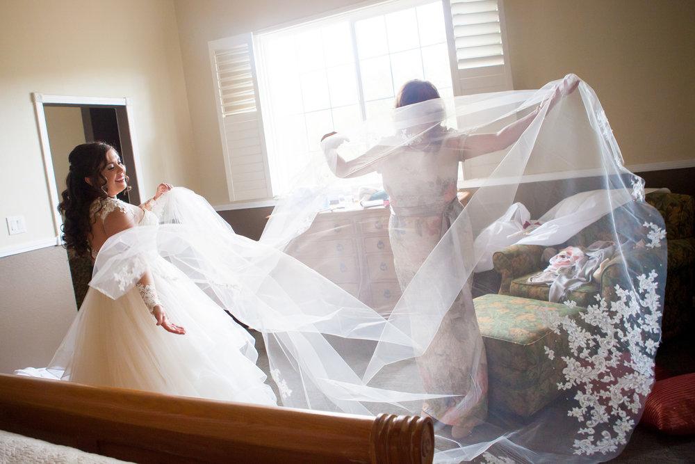Lauren and Shaun's Wedding-92.jpg