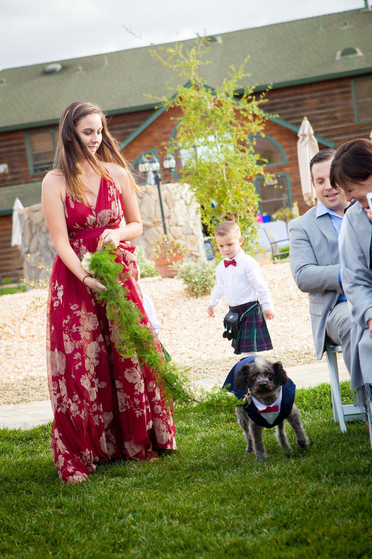 Lauren and Shaun's Wedding-201.jpg