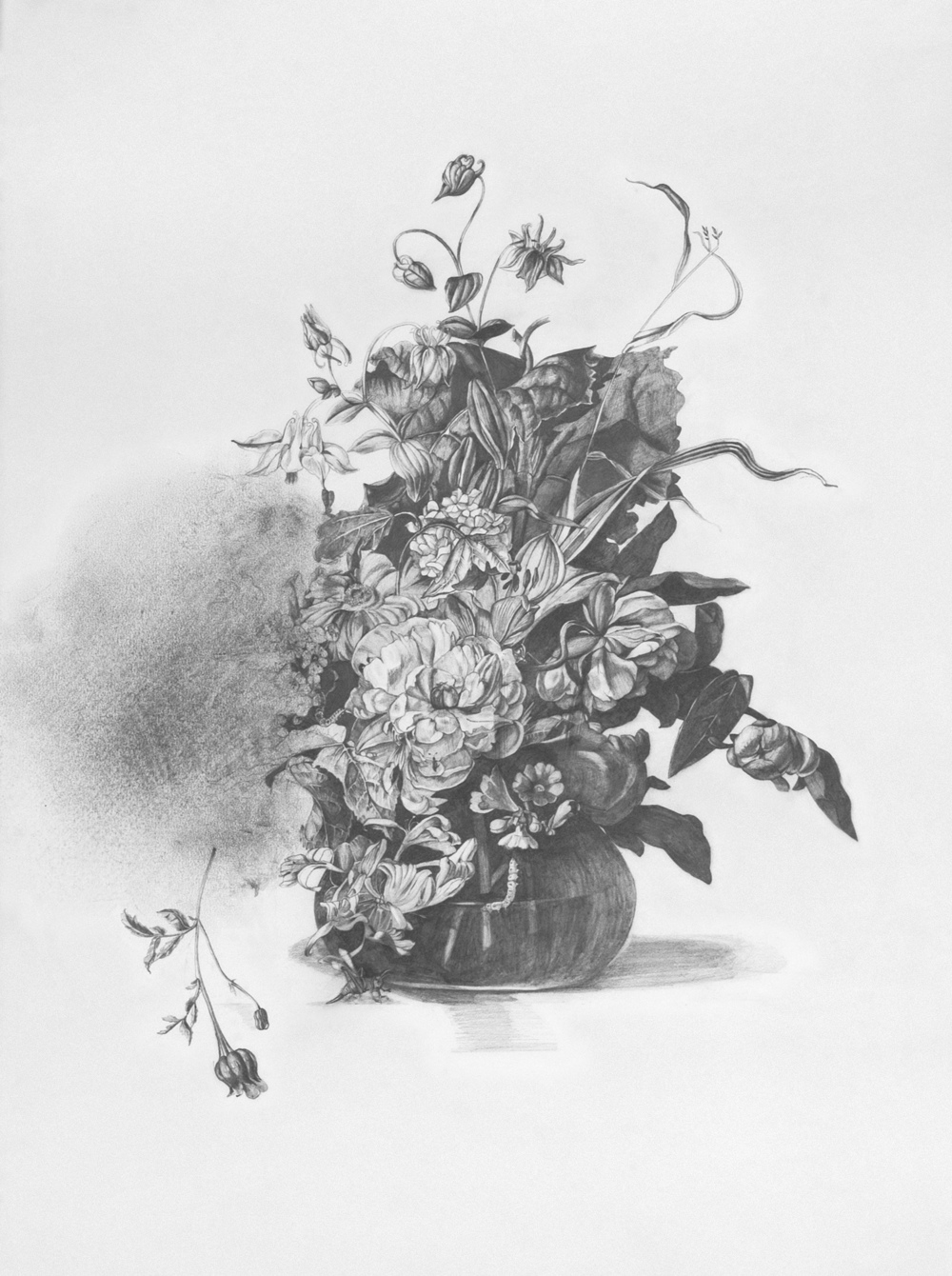 Untitled (Ruysch)