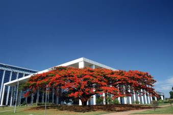Palácio da Justiça do Distrito Federal Foto: www.fatonotorio.com.br