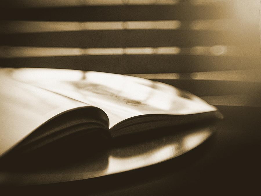 thumb livro aberto - estatuto - Sean Sequeira.jpg