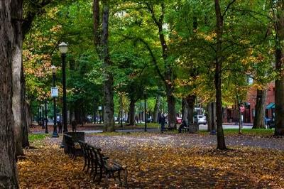 pdx-park.jpg