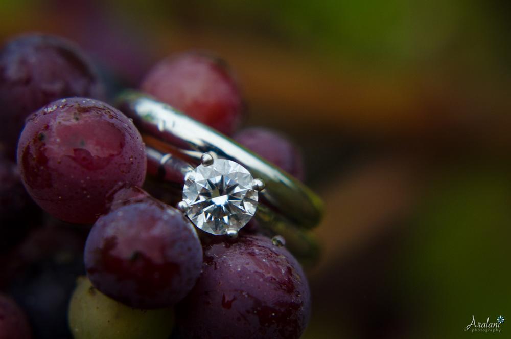 Maysara_Winery_Wedding0007.jpg